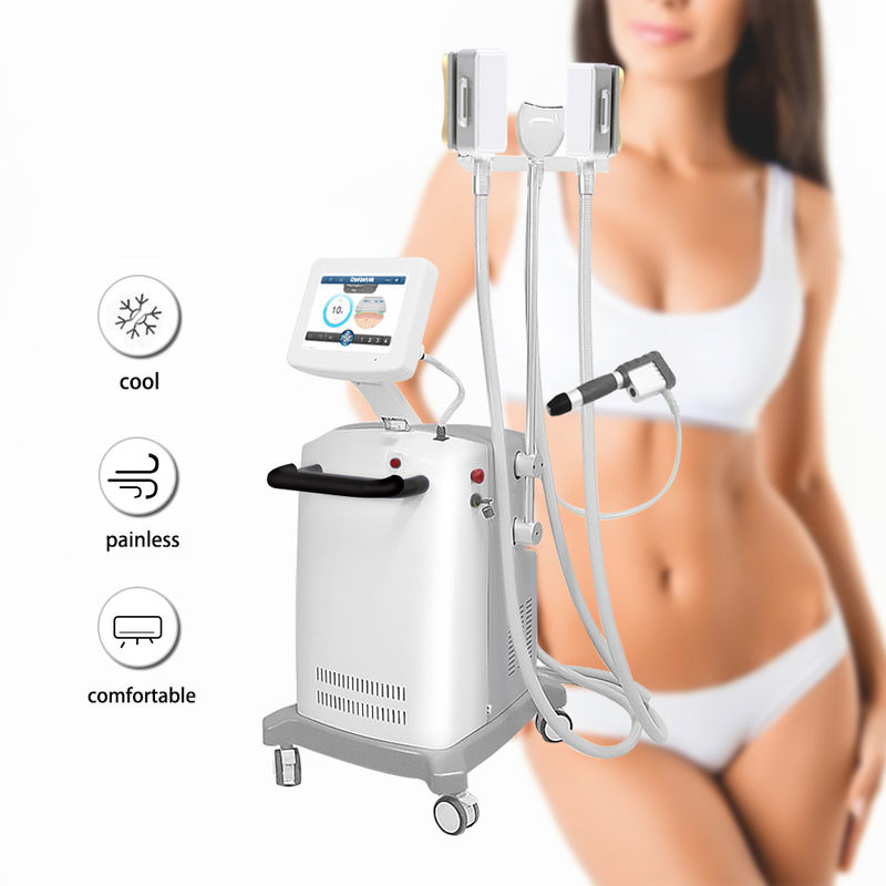 Astiland Cellulite Cryolipolysis Slimming Machine